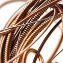 Cordes acoustique