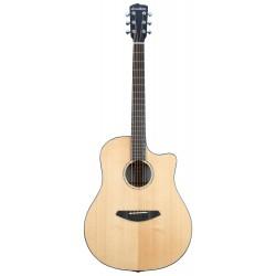 Guitare électro-acoustique Breedlove Solo Western CE