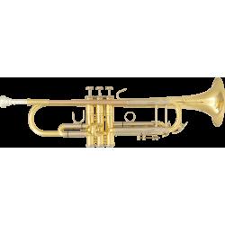 Trompette d'étude SML Paris TP500