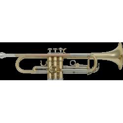 Trompette d'étude SML Paris TP300