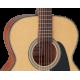Guitare folk Takamine GN10 NS naturelle