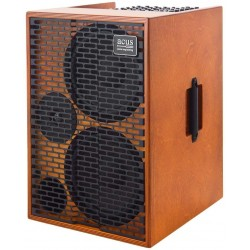 Ampli guitare électro-acoustique Acus One for string 10 AD wood