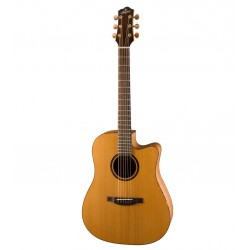 Guitare électro-acoustique Stanford 46 D1 ECW